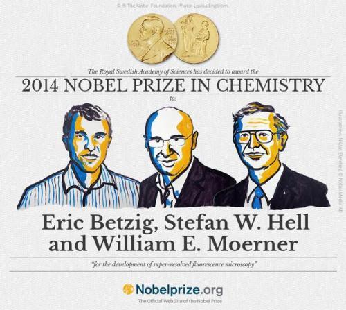 Nobel Química 2014